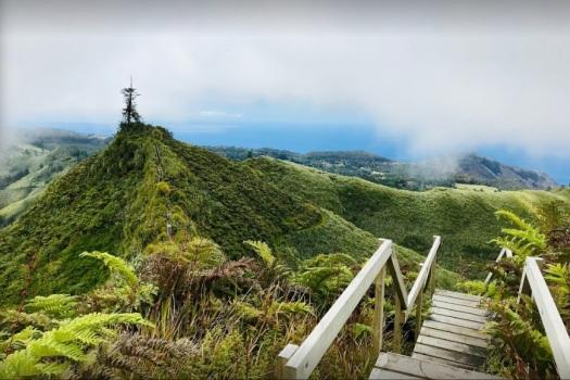 Pico de Diana cerca